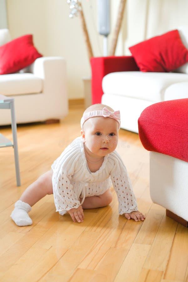 Bebé feliz que rasteja em um assoalho de folhosa imagem de stock royalty free