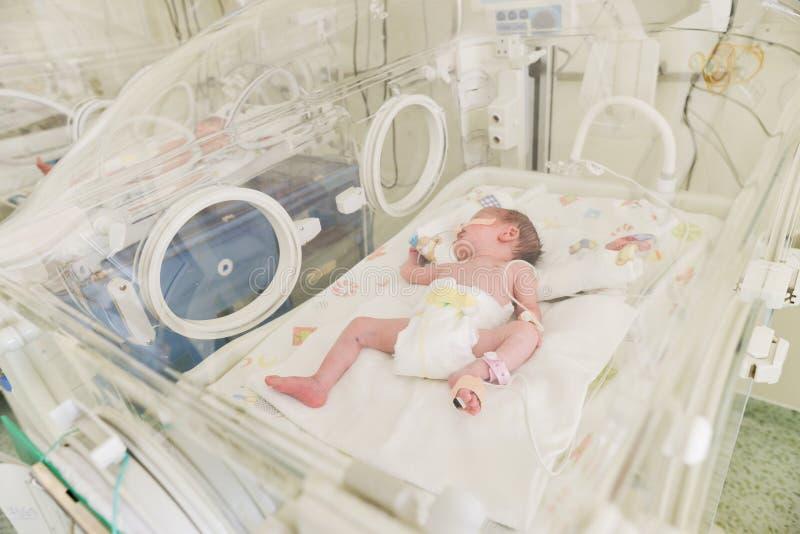 Bebé inocente recién nacido que duerme en una incubadora imagen de archivo