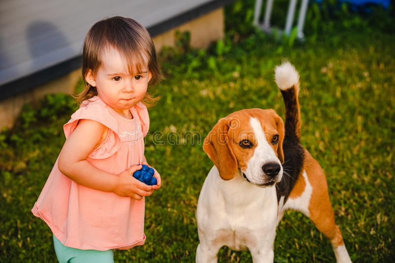Bebé lindo así como perro del beagle en jardín en día de verano foto de archivo