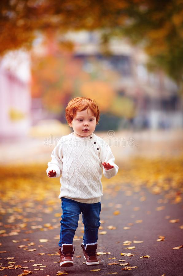 Bebé lindo del niño del pelirrojo que camina entre las hojas caidas en parque del otoño foto de archivo libre de regalías