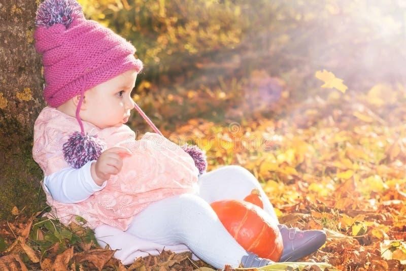 Bebé lindo del otoño en luz suave de oro imagen de archivo