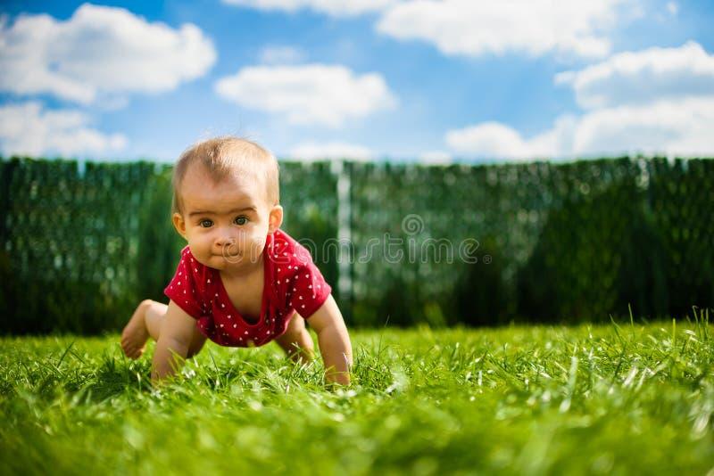 Bebé lindo en todos los fours en cuerpo rojo en hierba verde con el cielo azul y las nubes fotografía de archivo