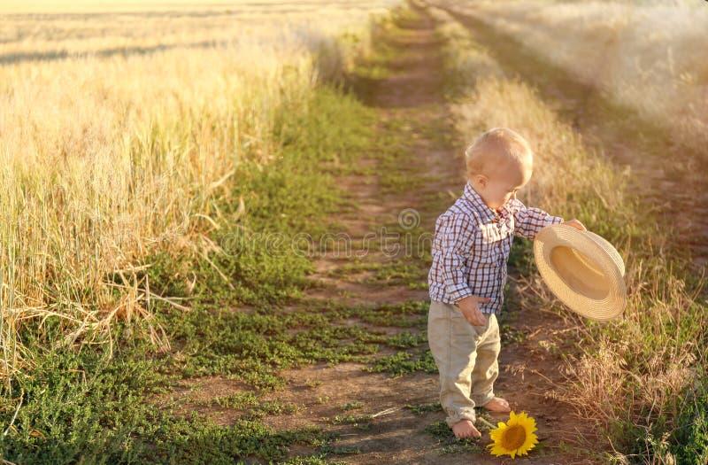 Bebé lindo que camina en campo de trigo el día de verano fotografía de archivo libre de regalías