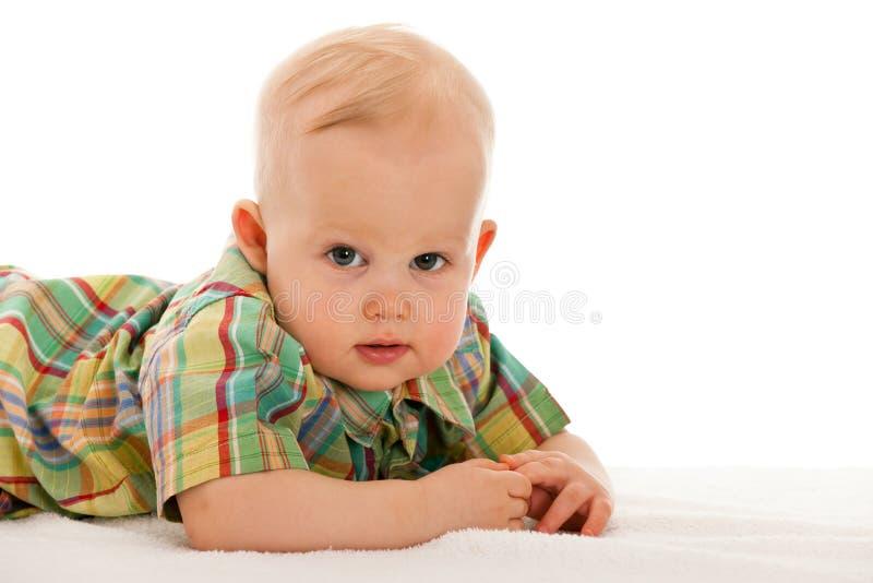 Bebé No Cobertor Foto de Stock
