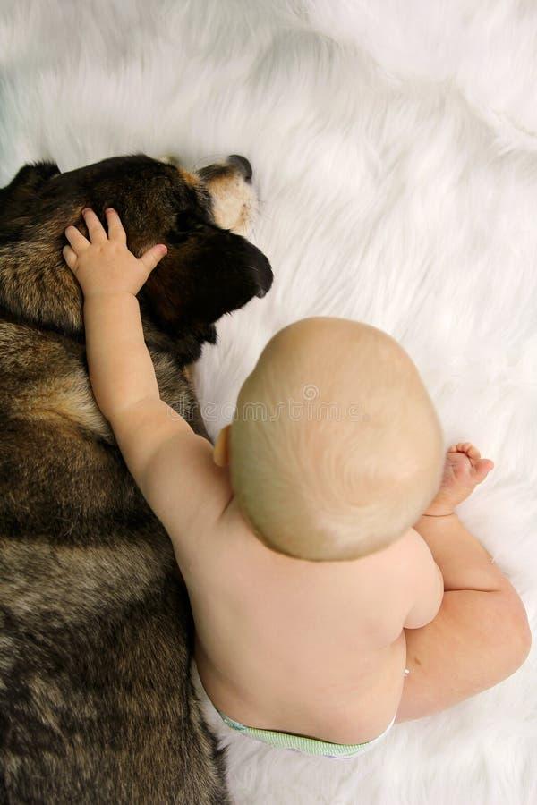 Bebé que alcanza la mano y que la acaricia abrazando al pastor alemán Dog imagen de archivo