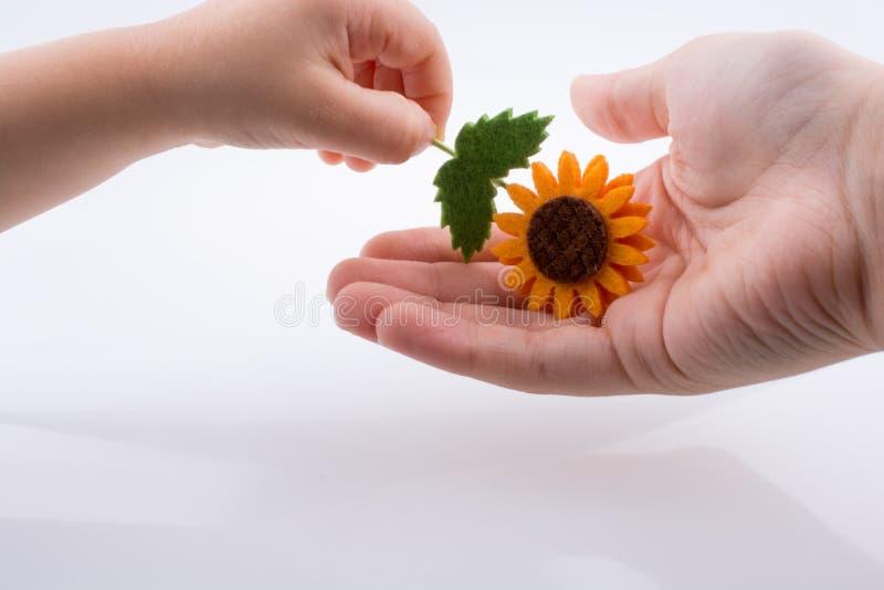Bebé que da una flor falsa foto de archivo