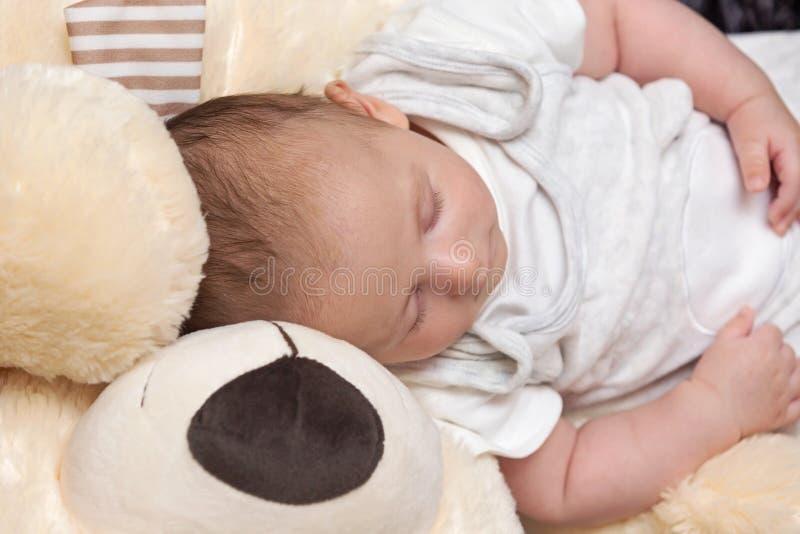 Bebé que duerme con Teddy Bear grande fotos de archivo libres de regalías