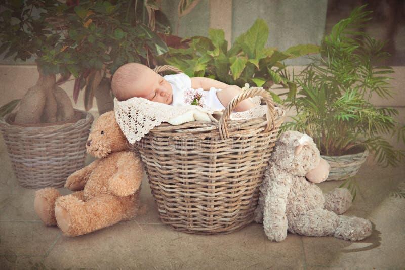 Bebé que duerme en la cesta fotos de archivo