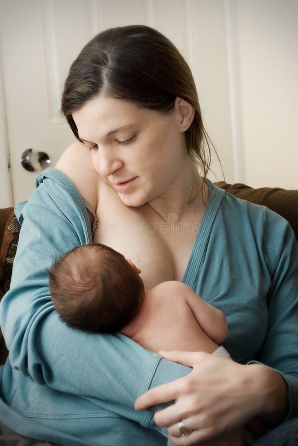 Bebé que introduce en el pecho imagen de archivo libre de regalías