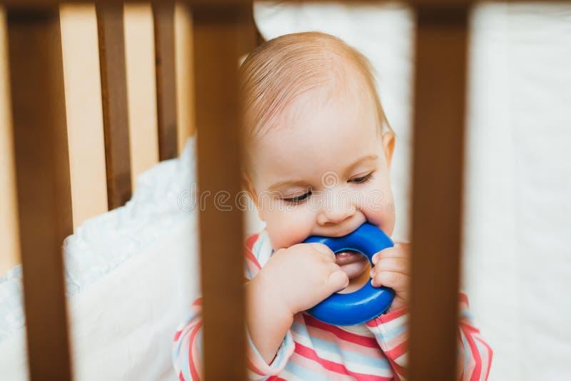 Bebé que mastica un juguete en el pesebre imagen de archivo libre de regalías