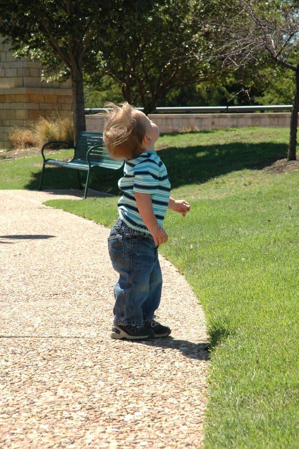 Bebé que mira PARA ARRIBA imágenes de archivo libres de regalías