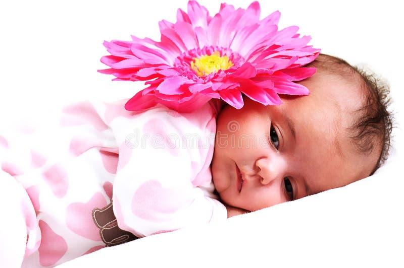 Bebé recém-nascido calmo com uma flor cor-de-rosa grande imagem de stock