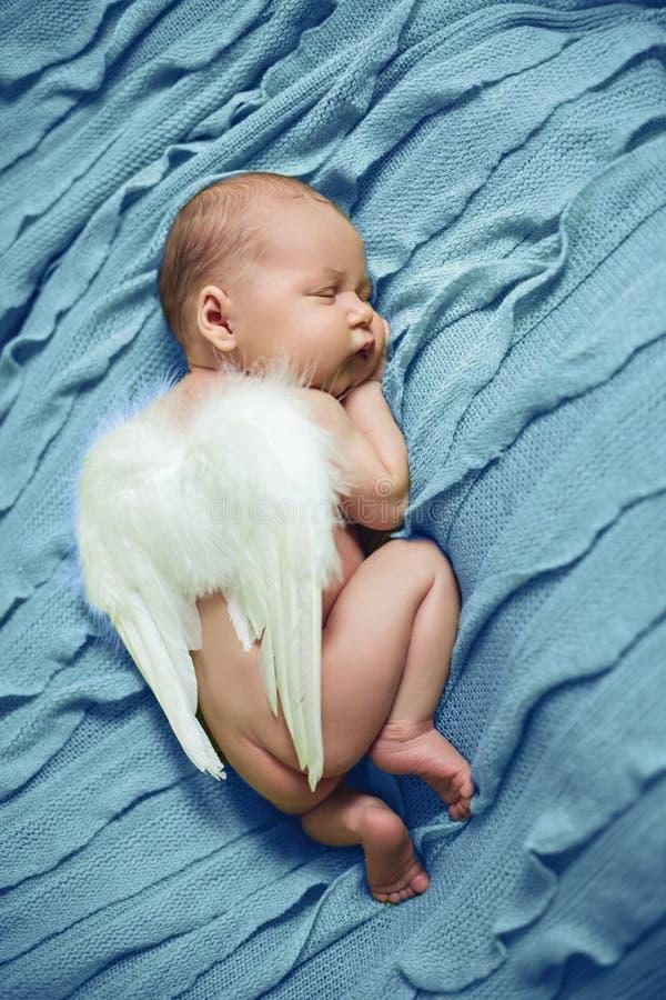 Bebé recién nacido con Angel Wings Sleeping imágenes de archivo libres de regalías