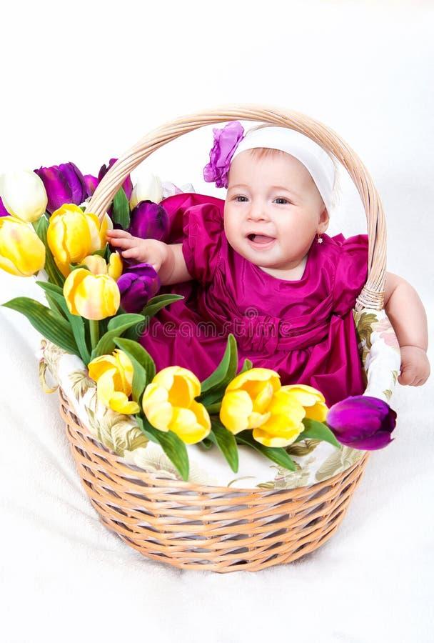 Bebé recién nacido en cesta imágenes de archivo libres de regalías