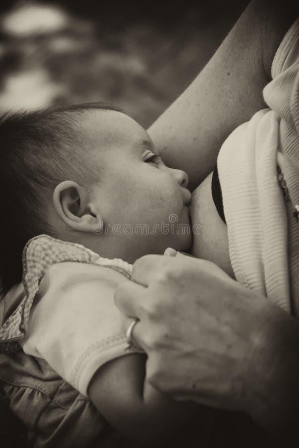 Bebé recién nacido que amamanta fotos de archivo