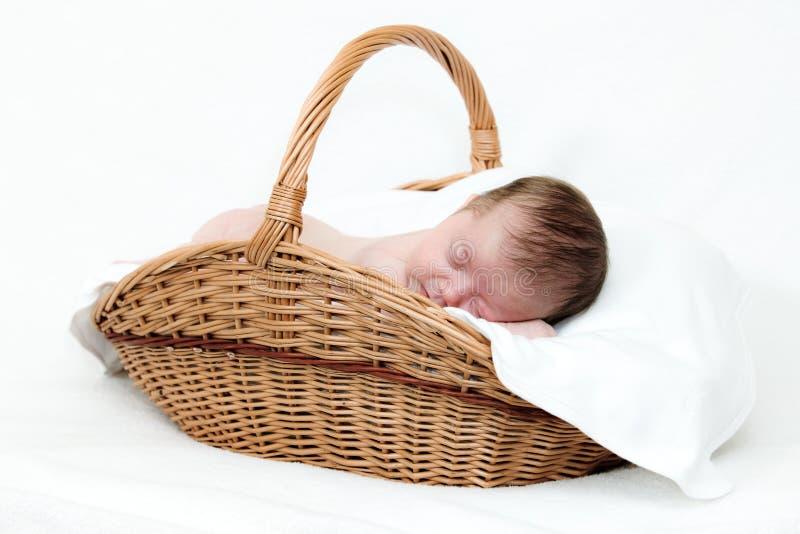 Bebé recién nacido que duerme en cesta fotografía de archivo libre de regalías