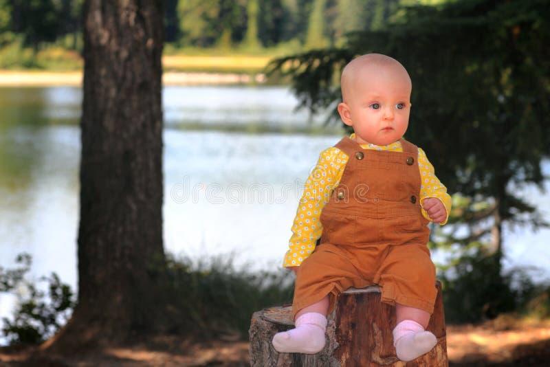 Bebé solemne en tocón fotos de archivo libres de regalías