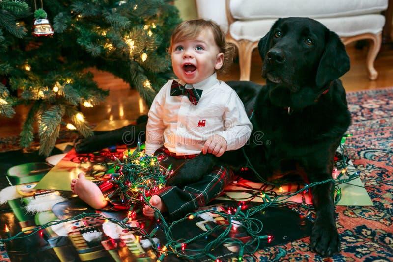Bebé y perro de la Navidad imagen de archivo libre de regalías
