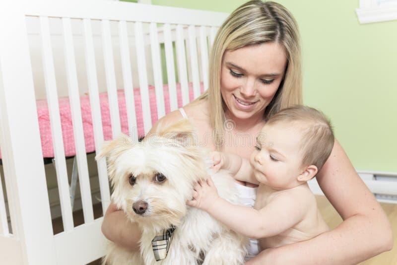 Bebé y perro que juegan en el dormitorio imagen de archivo libre de regalías