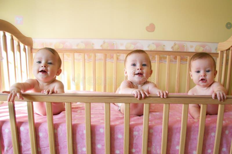 Bebés da objectiva tripla imagens de stock