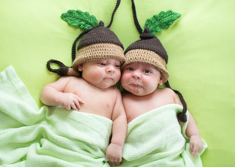Bebés de los hermanos de gemelos weared en sombreros de la bellota imágenes de archivo libres de regalías
