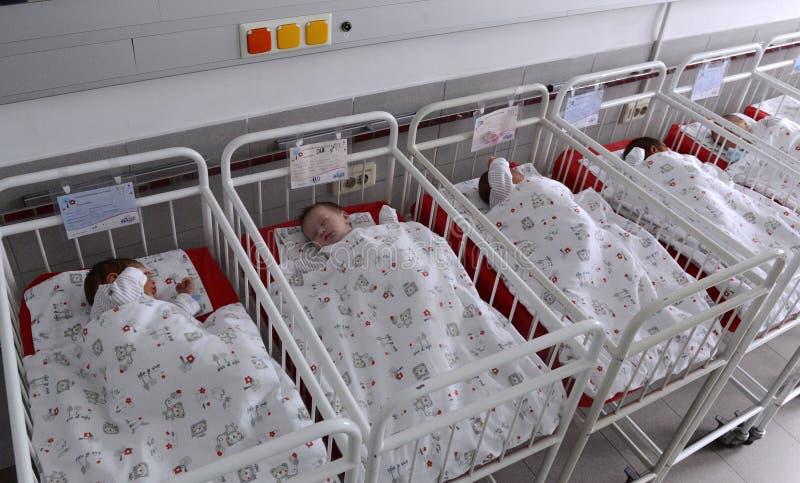 Bebés recién nacidos no identificados en el hospital de maternidad el 8 de enero, 20016 en Sofía, Bulgaria fotografía de archivo libre de regalías