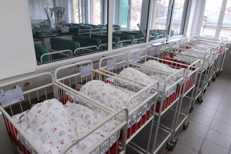 Bebés recién nacidos no identificados en el hospital de maternidad el 8 de enero, 20016 en Sofía, Bulgaria imagen de archivo