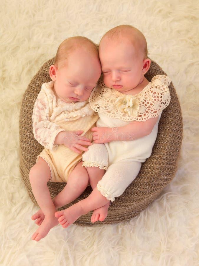 Bebés soñolientos del gemelo idéntico imagenes de archivo