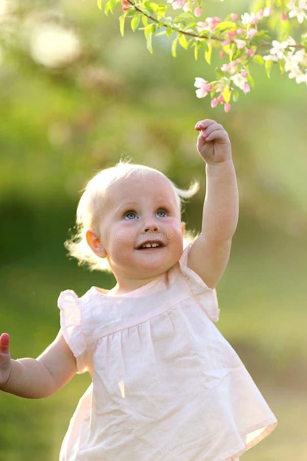 Bebê adorável no por do sol que alcança para a flor na árvore fotografia de stock
