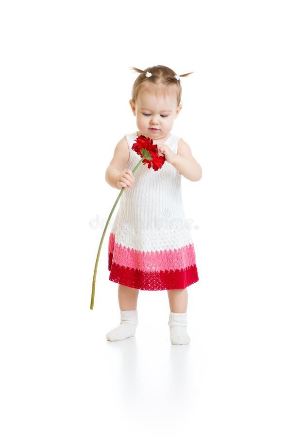 Bebê adorável que está e que olha ao vermelho imagens de stock royalty free