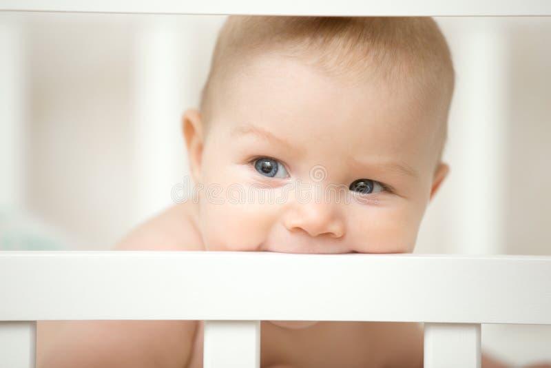 Bebê adorável que morde a placa de seu berço de madeira imagens de stock