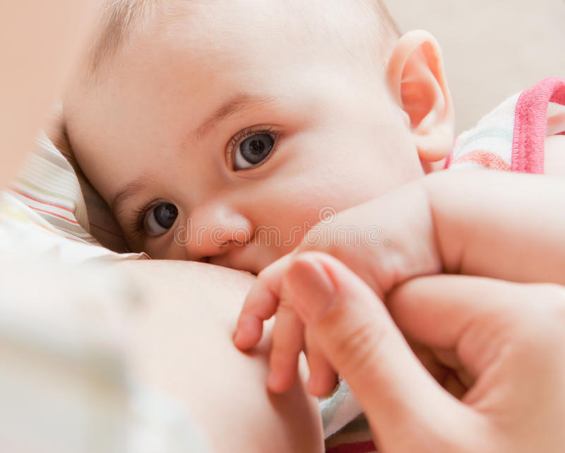 Bebê amamentando imagens de stock royalty free
