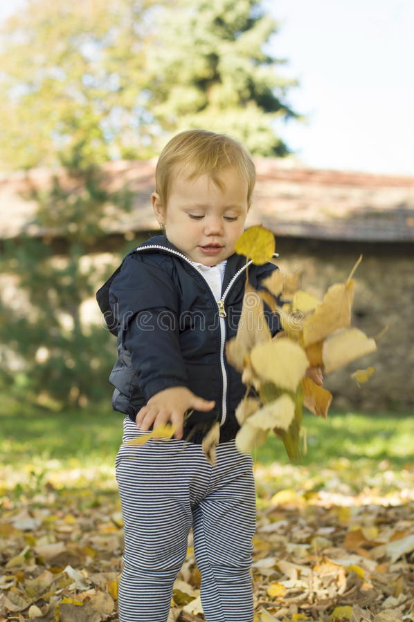 Bebê bonito do bebê de um ano que joga com folhas sobre em um parque fotografia de stock royalty free