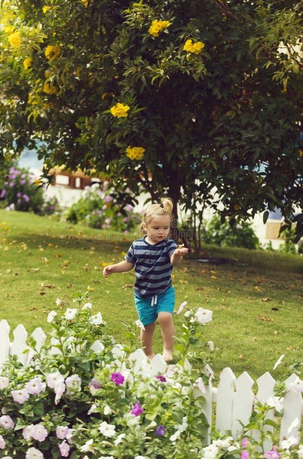 Bebê bonito que anda com os pés descalços na grama verde no parque foto de stock