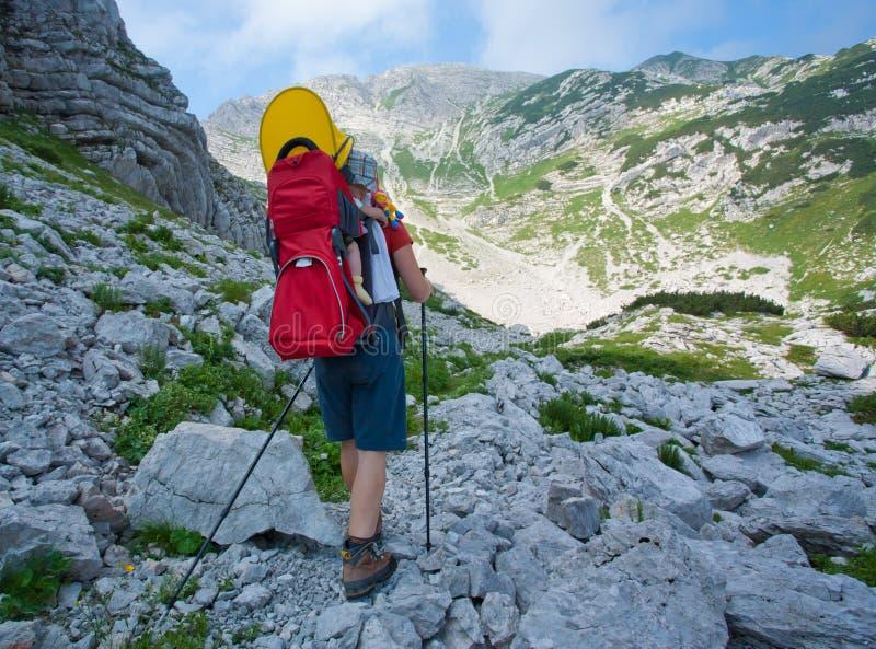 Download Bebê Carreg Da Matriz Nos Alpes Foto de Stock - Imagem de alpes, matriz: 16865752