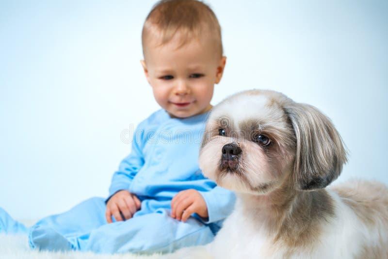 Bebê com cão fotos de stock royalty free