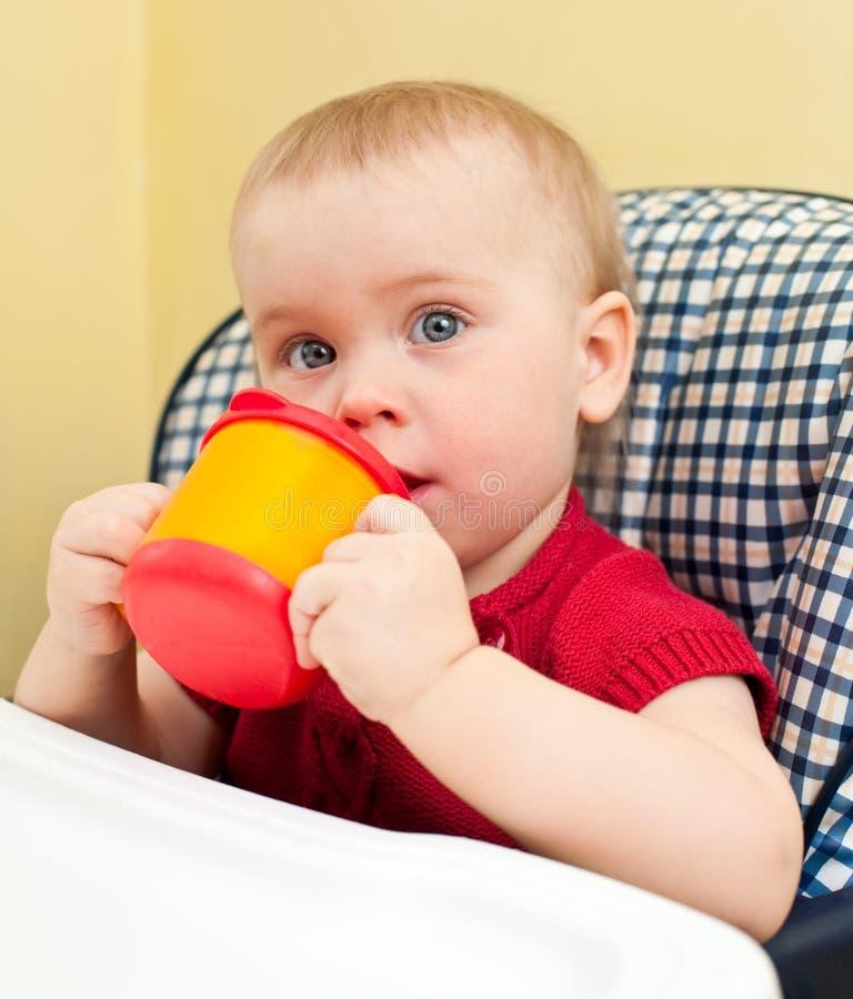Bebê com copo foto de stock royalty free