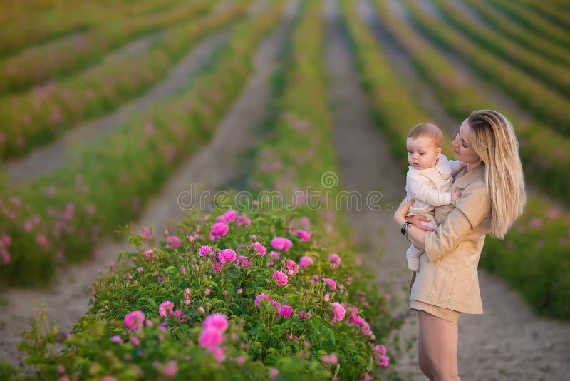 Bebê da terra arrendada da mulher no campo completamente de arbustos de rosas Estação de verão motherhood Tempo da família fotos de stock
