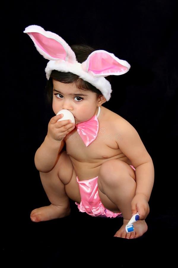 Bebê do coelho fotografia de stock royalty free