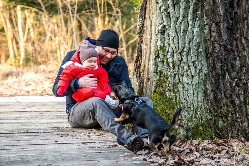 Bebê do pai e do filho no parque com seu cão foto de stock royalty free