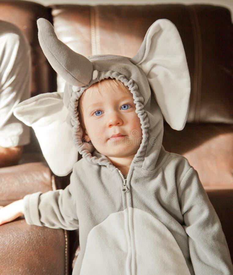 Bebê do traje de Dia das Bruxas como o elefante foto de stock