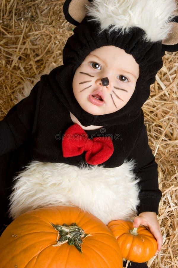 Bebê do traje de Halloween fotografia de stock royalty free