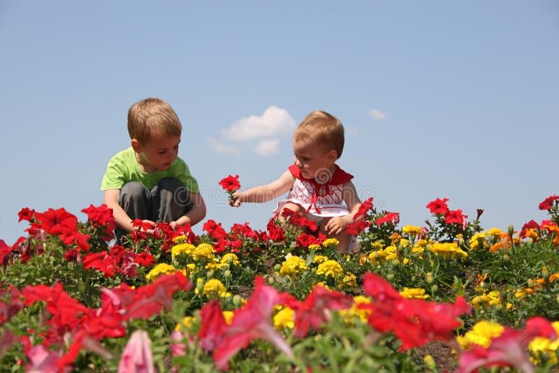 Bebê e criança nas flores fotos de stock royalty free