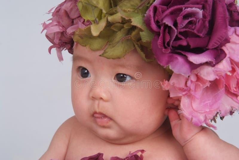 Bebê encantador imagens de stock royalty free