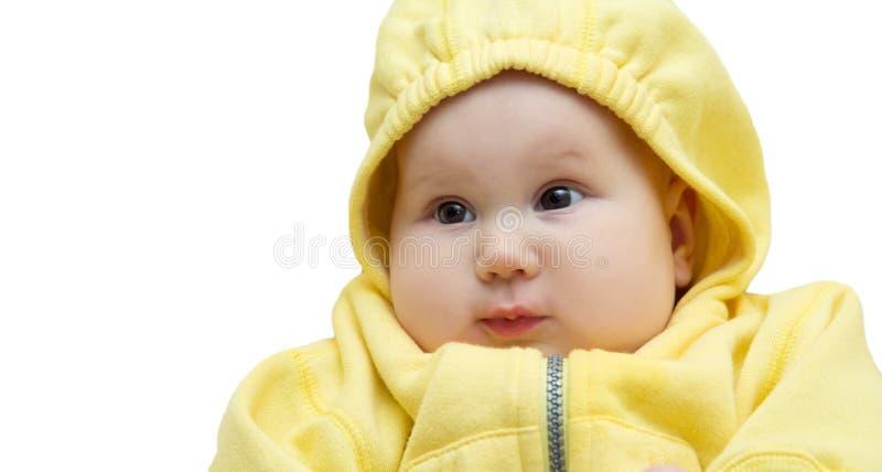Bebê engraçado bonito no fundo branco isolado foto de stock royalty free