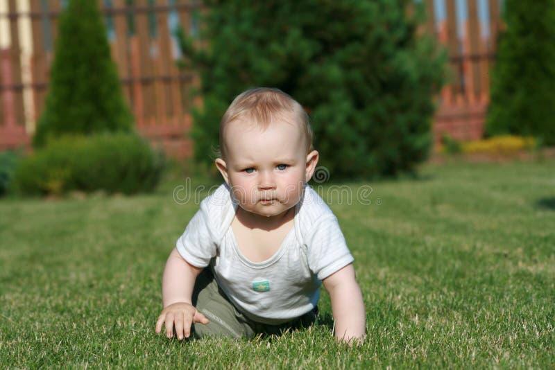 Bebê na grama fotografia de stock royalty free