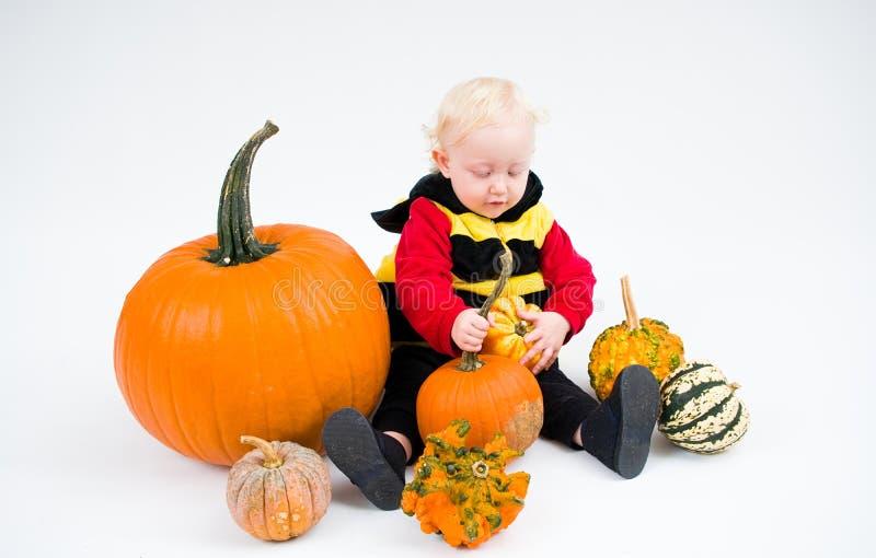 Bebê no traje com as abóboras no fundo branco fotografia de stock royalty free