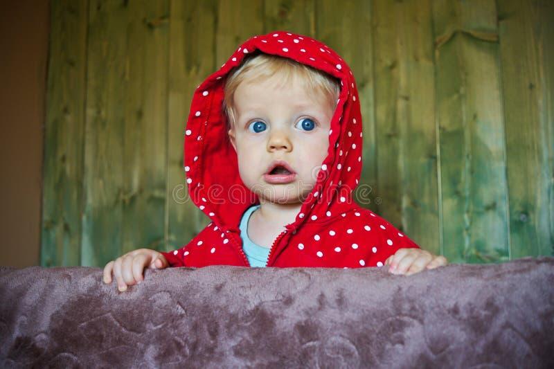 Bebê olhando fixamente, 8 meses velho foto de stock royalty free