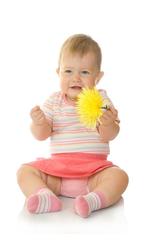 Bebê pequeno de assento com flor amarela #8 imagens de stock royalty free