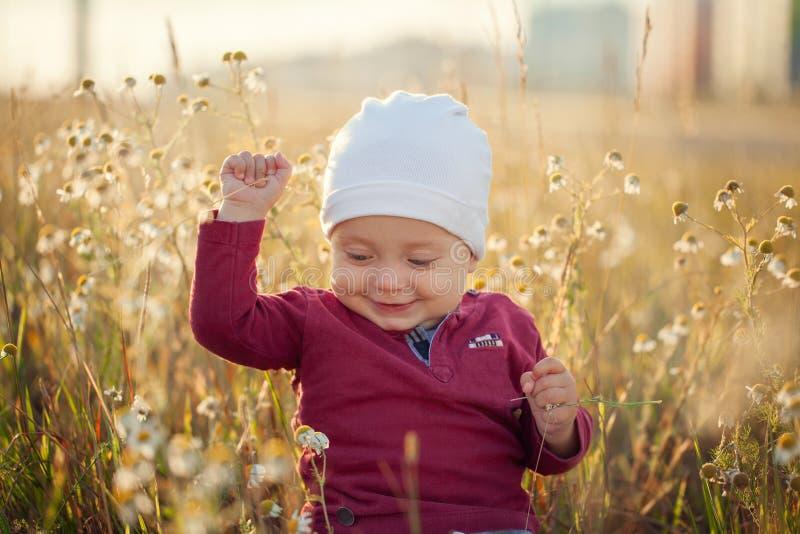 Bebê pequeno feliz que senta-se e que sorri em um prado na natureza no dia ensolarado do verão foto de stock royalty free